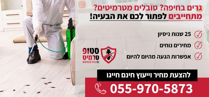 טרמיטים בחיפה
