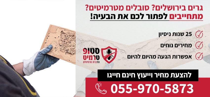 טרמיטים בירושלים